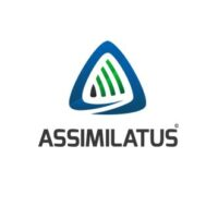 Assimilatus_sq